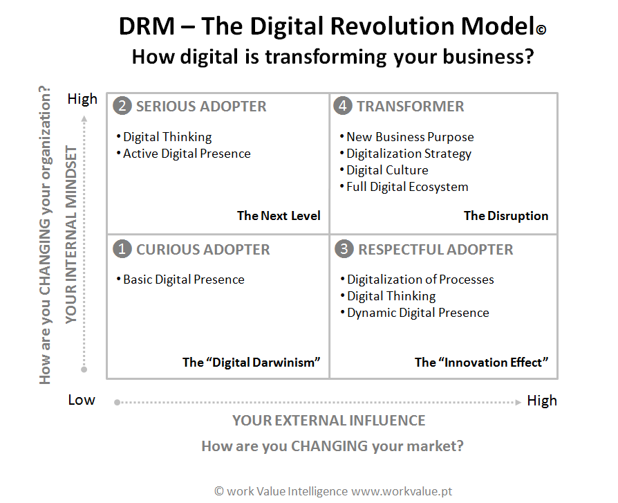 DRM Digital Revolution MODEL